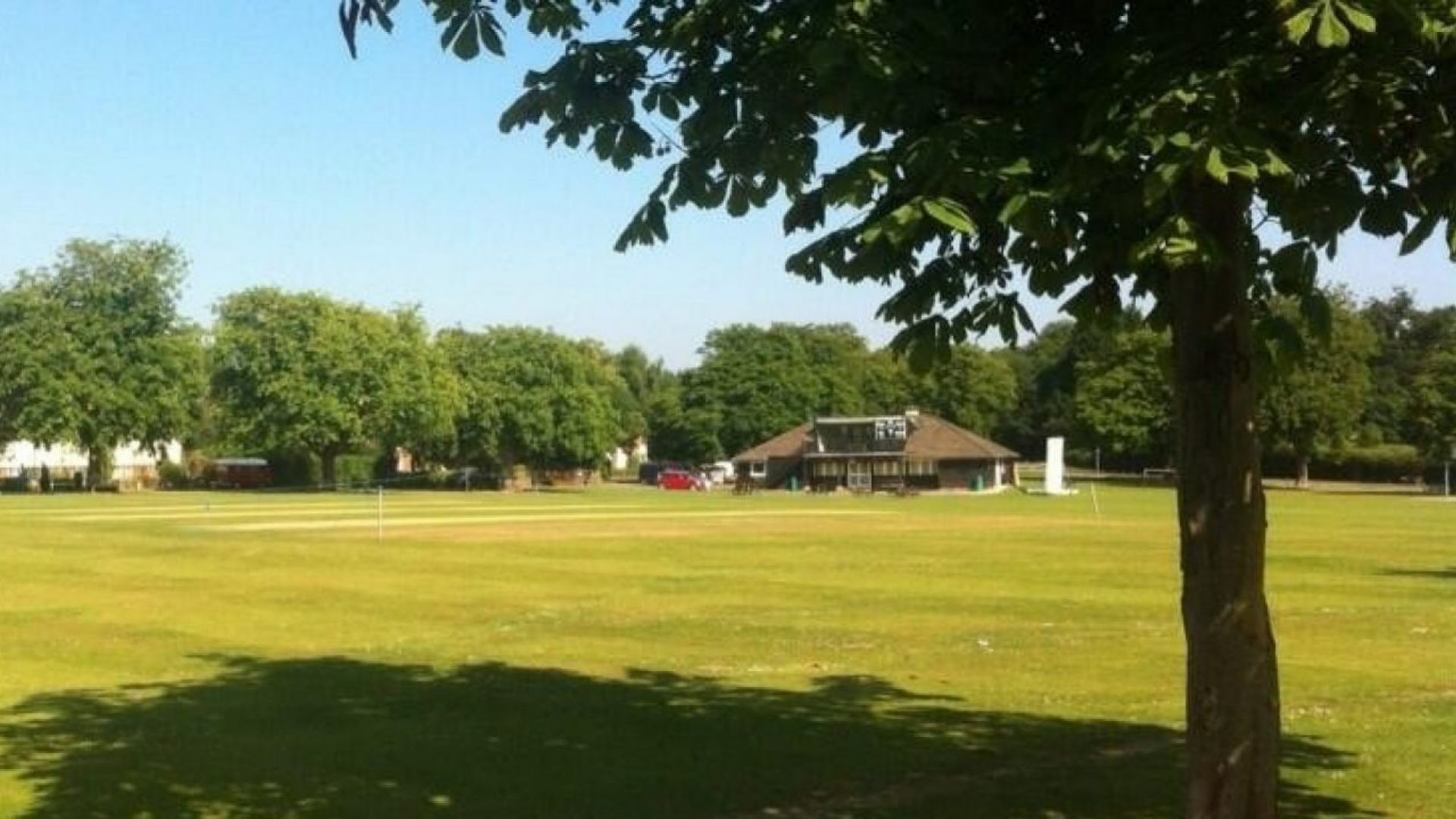 Wisborough Green Cricket Club